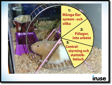 Hamsterbild